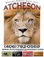 atcheson taxidermy logo