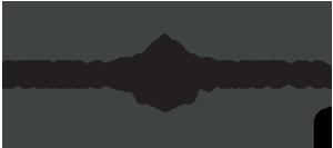 surelock security logo